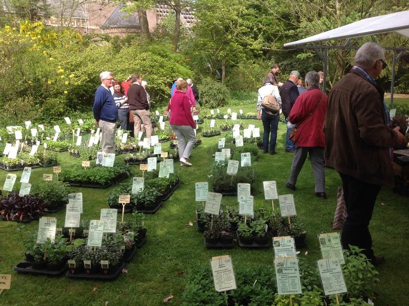 Botanische Tuin Kerkrade : Pflanzenmarkt im botanischen garten kerkrade freizeitguide für